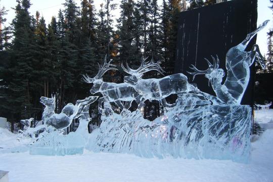 Caribou Descending