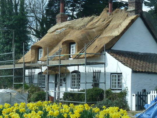 New thatched roof for the Owl and Pussycat  cottage (Reed)