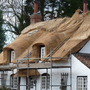 New thatch for the old cottage (Reeds)