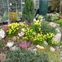 garden_1.03.08_006.jpg