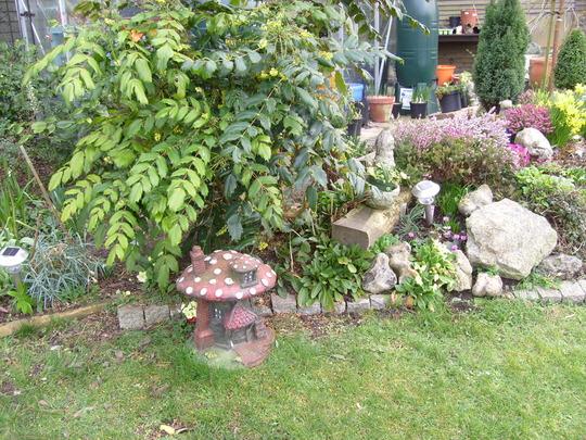 garden_1.03.08_005.jpg