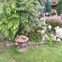 Garden_1.03.08_005