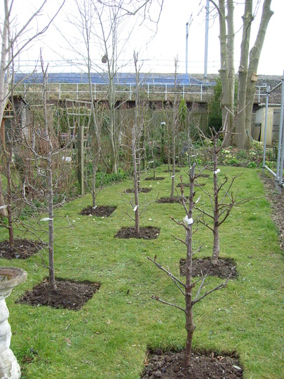 garden_1.03.08_016.jpg