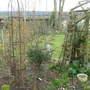 Garden_1.03.08_015