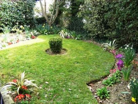 Front garden coming into colour
