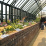 view inside the Alpine House