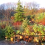 Walled_garden_in_december_sun