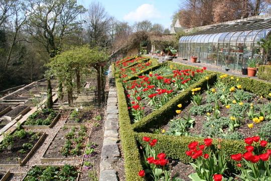 Walled garden at Kirklands