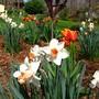 4_7_8_09_spring_168