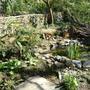Pond with fairy door