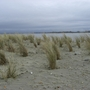 National Trust West Wittering