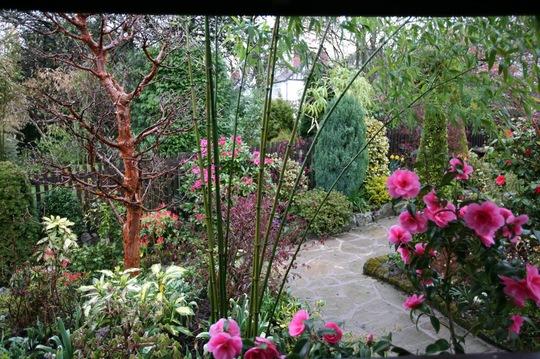 middle garden - 10 April