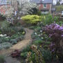 View from kitchen window - April 2009