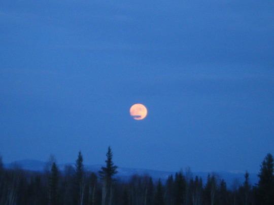Pink Full Moon Rising
