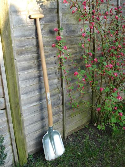 German shovel