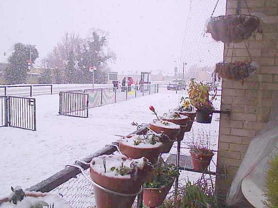 Snowing__as_seen_from_balcony__2009-02-06_001.jpg