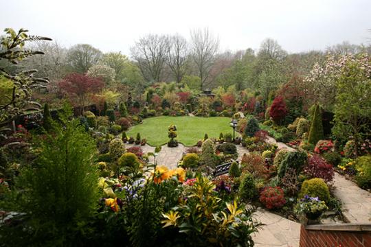 Upper garden 17 April