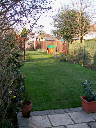 first grass cut