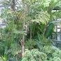 74_sunderland_winter_gardens_3