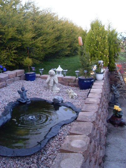 my sisters garden pond