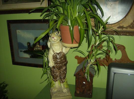 Rabbit Plant Holder