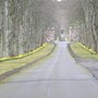 Drive to Dunrobin castle