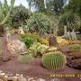 garden/c