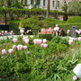 Venice public garden.