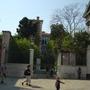 Venice city garden
