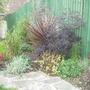 part of back garden....April