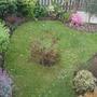 Front garden....April
