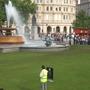 Trafalgar square grass