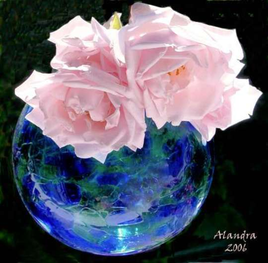 Glass Ball with Roses (new dawn pink rose)