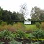 westbury court garden- national trust property nearby