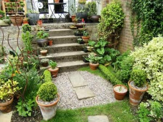 steps with pots