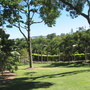 Roma Street Parklands - Brisbane - Overlooking parkland from hill