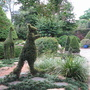 Roma Street Parklands - Brisbane - Topiary Area