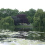 St James&#x27;s Park June 2007