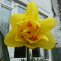 March_041
