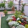 Spanish garden (passiflora)