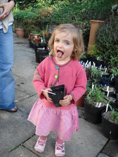 Daisy having a 'taste' of gardening!