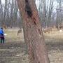 Me Feeding Deer