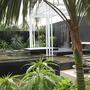 Canary Island Spa Garden
