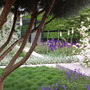 Daily Telegraph Garden at Chelsea