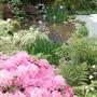 Echoes of Japan garden