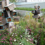 Smaller wildlife home at Chelsea 2009