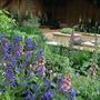The QVC Garden