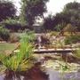 Retreats_pond