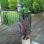 Garden_and_leahs_house_014
