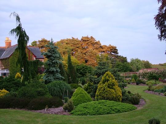 Foxhollow Garden at Dusk 2